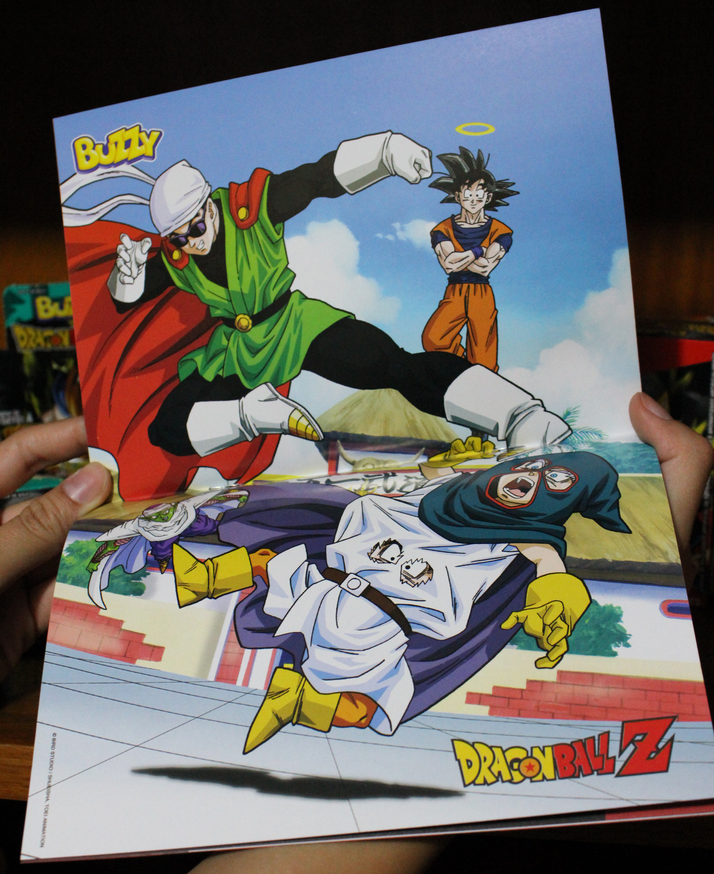dbzalbum-pag5-poster