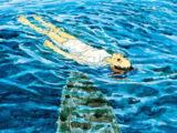 Children of the Sea: adaptação animada ganha pôster e novas informações da equipe